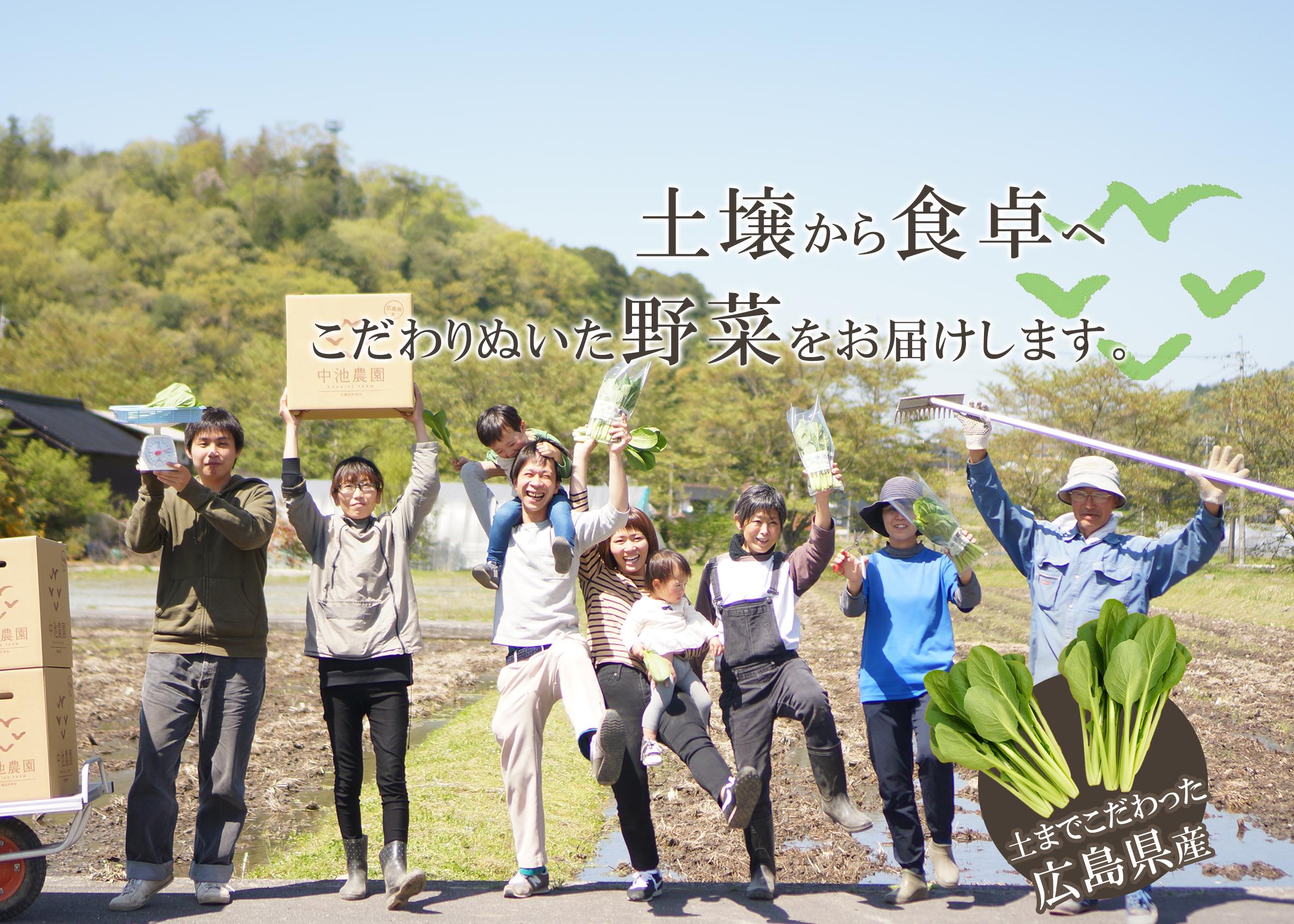 広島市・安芸高田市で小松菜・春菊・ほうれん草を生産する農家です。